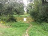 Rzeka Bug, granica z Białorusią we Włodawie