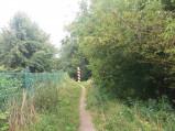 Ścieżka prowadząca do słupa granicznego we Włodawie